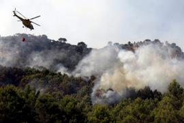 Extinguido el incendio forestal de Orient que ha quemado 9 hectáreas