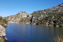 Palma tiene garantizada el agua para el invierno sin necesidad de comprar