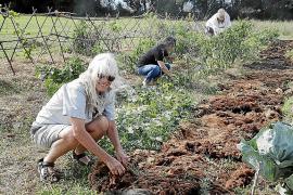 Vida 100 X 100 natural: la Permacultura crece en Mallorca