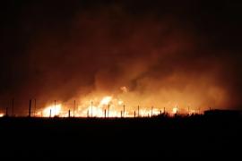 Alarma por un gran incendio que el viento ha descontrolado en s'Albufera, en Muro