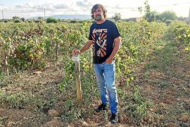 Pep Rodríguez: «No soy químico. No soy enólogo, ni alquimista. Soy un animal de viña»