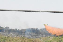 Una joven reconoce ser la autora de cuatro incendios forestales en Capdepera