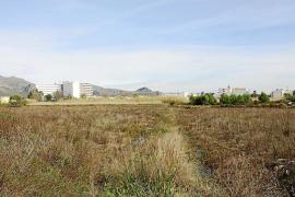 Los propietarios del Ullal de Pollença reclaman al Govern una indemnización de 12 millones de euros