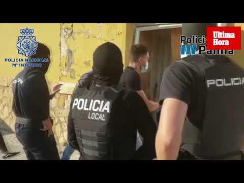 La Policía Nacional elimina uno de los puntos de producción de marihuana de La Soledad