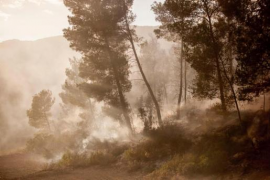 Alarma por un virulento incendio forestal en Ibiza