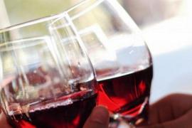 Los mejores tintos de la 'Guía de vinos' de la OCU