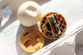 Crean con impresión 3D huevos falsos de tortuga con GPS para perseguir el comercio ilegal