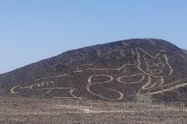 Descubren la figura de un gato de 37 metros entre los geoglifos de Nazca