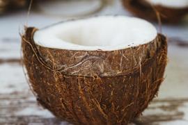 Los estudios filipinos determinan que el aceite de coco destruye el virus de la COVID-19