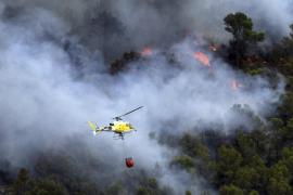 El Govern estima que la mitad de los incendios de este verano fueron provocados