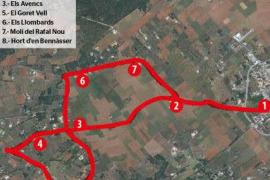 El Camp d'en Torrella, entre Santanyí y Els Llombards