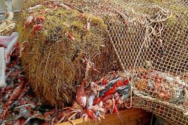 Piden al Govern que investigue el origen de las balas de paja en el mar