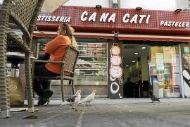 Guerra a las palomas en Palma: pienso anticonceptivo para regular su población