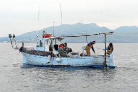 Pescadores de Pollença y Cala Rajada se sienten «ahogados» por el Govern