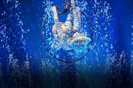 Show acuático