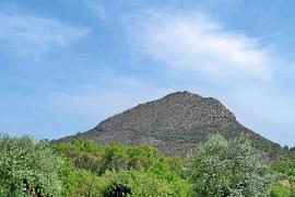 El Govern apoya la construcción del parque temático de 'Tierra Santa'