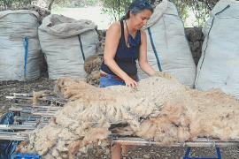 Bioeconomía para dar salida a la lana