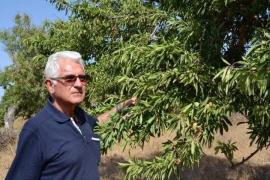 Fallece Rafel Socias Company, ingeniero y poeta