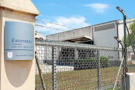 La potabilizadora y el matadero de Manacor centran las inversiones del presupuesto de 2021