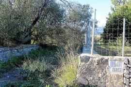 Un perito judicial cuestiona la apertura de la ruta Artà-Lluc a su paso por Selva