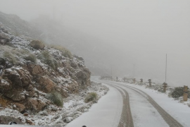 La nieve tiñe de blanco el Puig Major