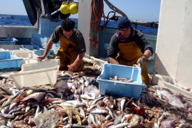 Oposición de los pescadores de Baleares a la medida de la UE de reducir un 15 % los días de faena