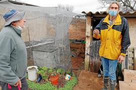 Cort busca más payeses eco para cultivar tierras del Parc Agrari Nord