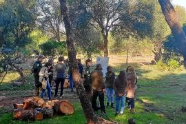 La finca pública de es Canons acogerá una zona de acampada para 250 personas