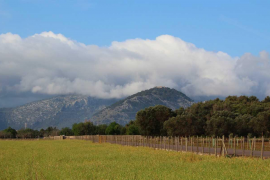 El tiempo para Navidad: La inestabilidad predominará en Mallorca