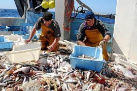 Europa reduce los días de faena a las barcas de 'bou' e indigna al sector pesquero