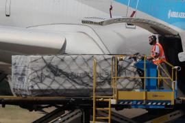 Las aerolíneas piden recuperar la conectividad para transporte de la vacuna