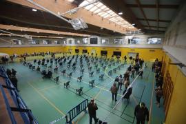 Mallorca roza los 7.000 casos activos de COVID-19