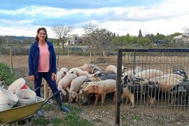Joana Cerdà Cañellas: «Mantenemos cerdos que tenían que salir el pasado mes de marzo»