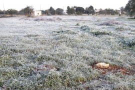 Mallorca helada: temperaturas bajo cero y cielos despejados tras el temporal