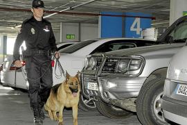 Los detenidos en Son Sant Joan dicen que creían que los coches eran de políticos