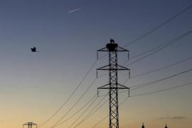 ¿Decide el Gobierno el precio de la luz?