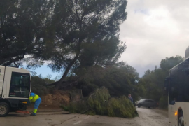 Temporal en Mallorca