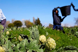 La reinvención de la agricultura en el escenario post COVID