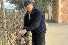 Sebastià Crespí: «Toda la vida hemos hecho vino enfocado a los mallorquines»