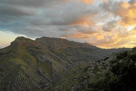 El Govern balear blinda el Puig Roig para proteger al buitre leonado del impacto humano