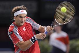 Ferrer jugará la final de París  ante Janowicz tras vencer a Llodra