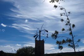 Las altas temperaturas en febrero en Mallorca