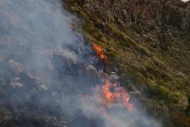 Incendio forestal en Pollença