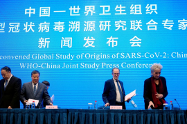La OMS y China concluyen que el coronavirus es de origen animal y surgió en diciembre en Wuhan