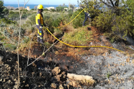 Extinguido un incendio forestal en Artà