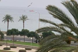 Salvamento Marítimo rescata a los cinco ocupantes de un velero tras volcar frente al Portixol