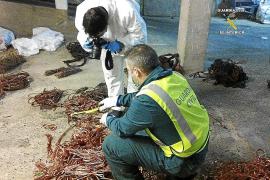 Condenado un hombre por robar más de 600 kilogramos de cobre en una subestación eléctrica