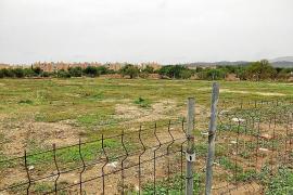 El Consell pagará 100.000 euros al año a Calvià por la concesión municipal del solar de la ITV