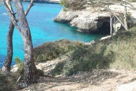 ¿Mallorca o el caribe?