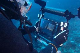 Recurren a la inteligencia artificial para recrear el fondo marino de Cabrera